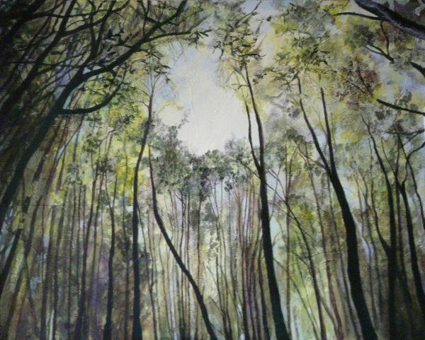 The Canopy 120 cm x 96 cm